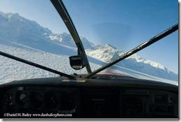 Alaska Jetwhine