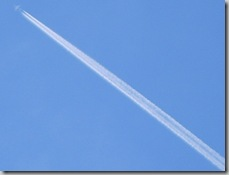 Look-up-contrail